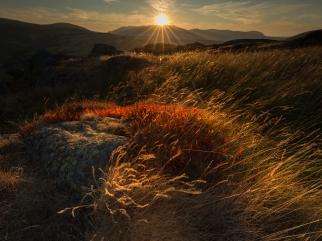 Gowbarrow, Lake District
